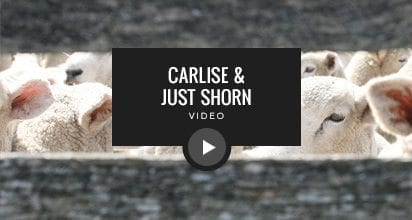Carlisle Just Shorn Showroom Video
