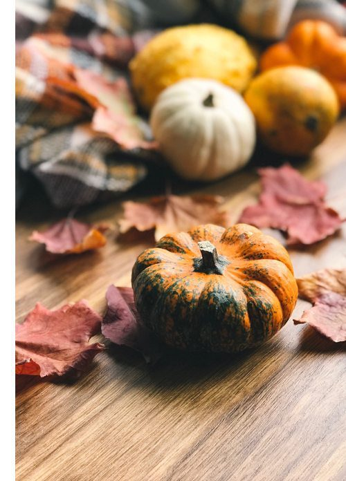 decorate your holiday table with festive pumpkins