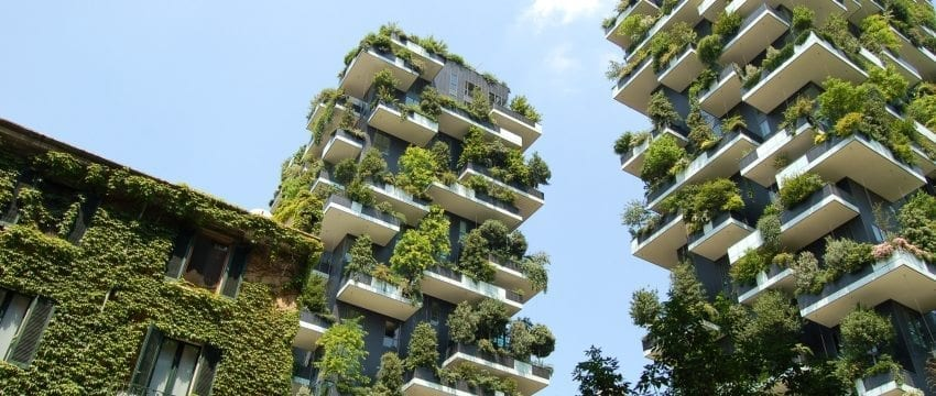 Living in Green: 7 Ways to be More Earth Friendly at Home